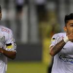 Santos 2014 Brasileirão Season Preview